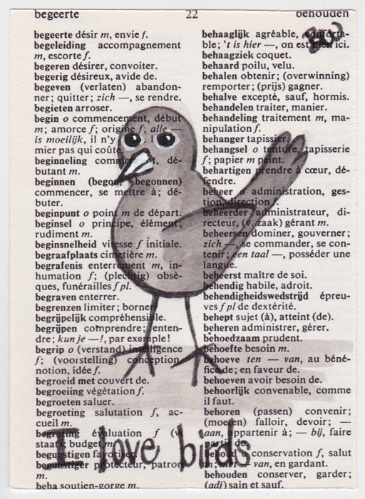 blog3-birds
