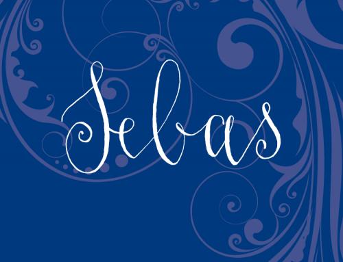 Geboortekaartje Sebas
